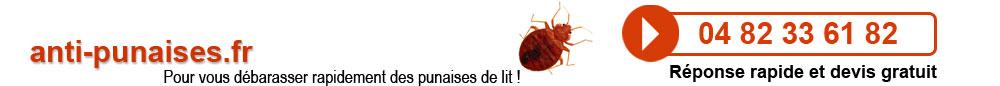 Anti-Punaises.fr